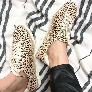 Dolce Vita Leopard Print Mikey Sneakers NWOT